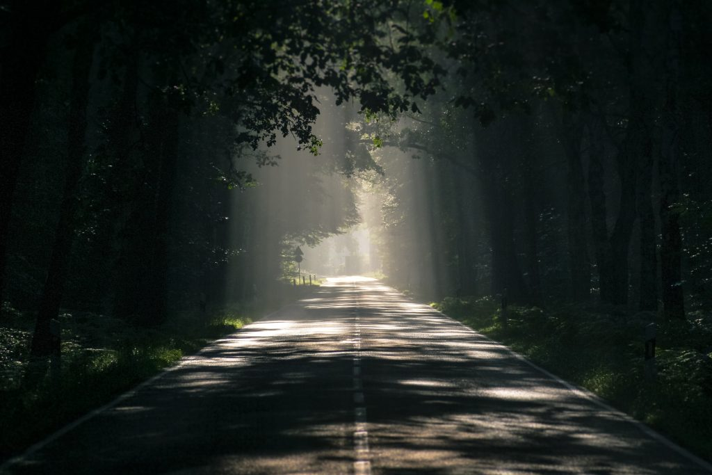 Light shines through a thick forest canopy on a long road. This could represent the hope a trauma therapist in Sacramento, CA can provide. Contact us to learn how marriage counseling in Sacramento, CA can support you! Therapy in Sacramento, CA can help you reach a better tomorrow! 95630 | 95747 | 95628